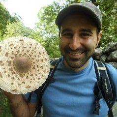 Mushroom season.