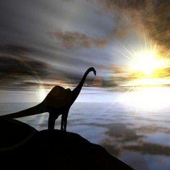 Do dinosaurs have a divine spark?